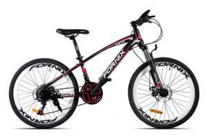 Xe đạp fornix ms50