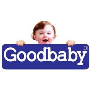Xe đẩy em bé hãngGoodbaby (1)