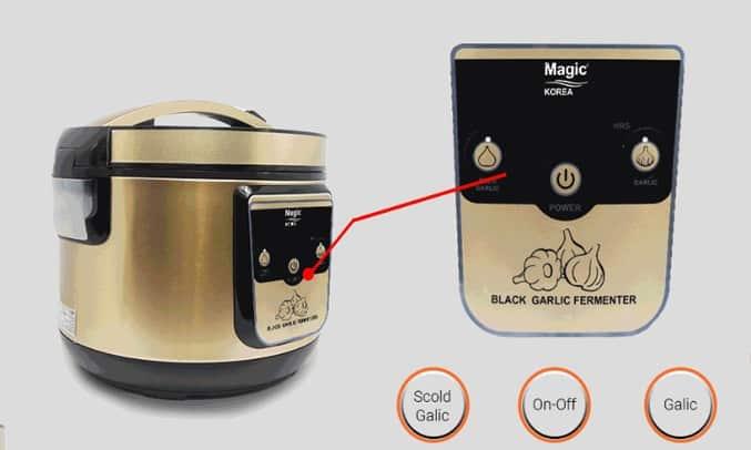 thiết kế của máy làm tỏi đen