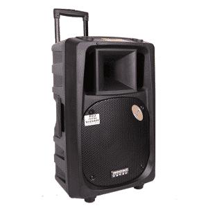 Loa kéo Bluetooth công suất lớn Temeisheng DP-2398T