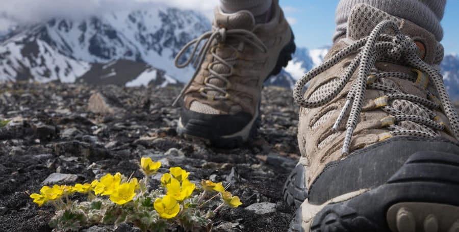 chọn mua giày leo núi giá rẻ tốt nhất