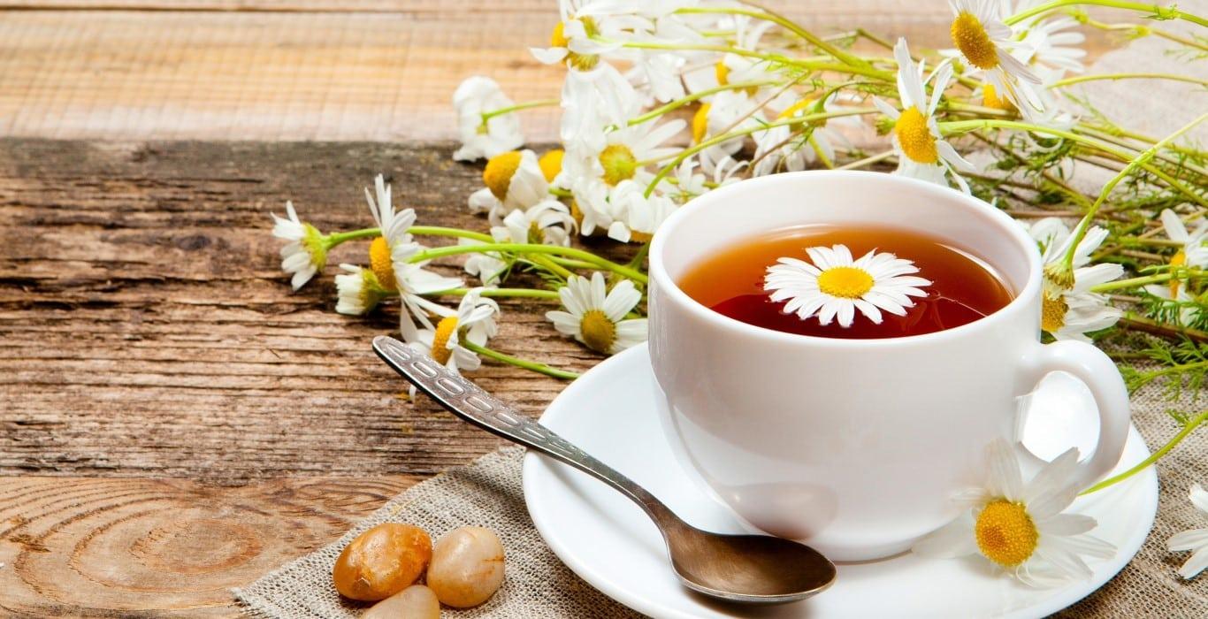chọn mua trà hoa cúc giá rẻ tốt nhất