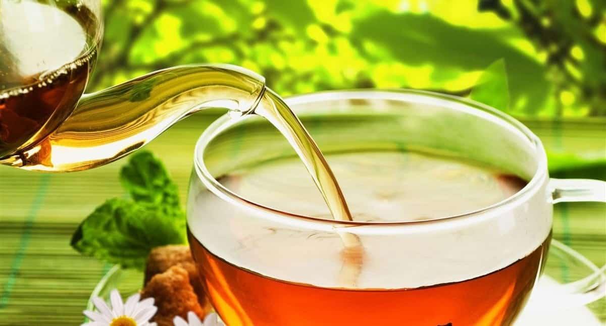 kiểm tra hương vị trà hoa cúc