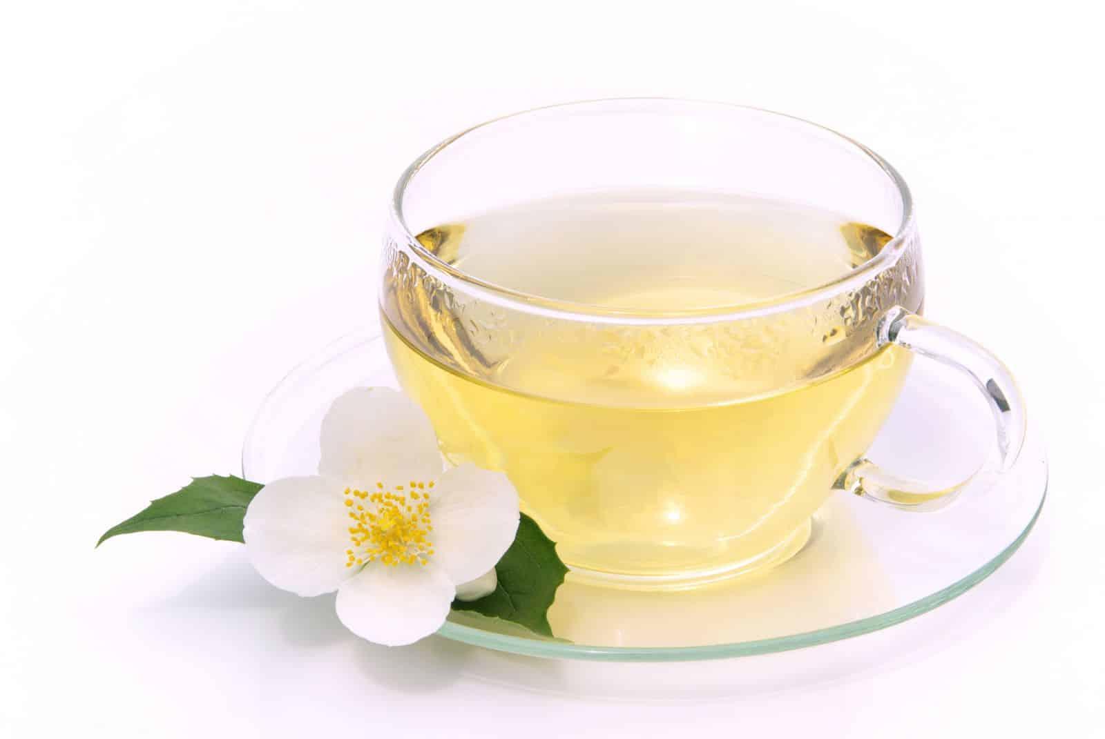 trà hoa cúc tốt nhất