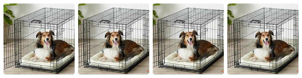 mua chuồng chó kích thước bao nhiêu