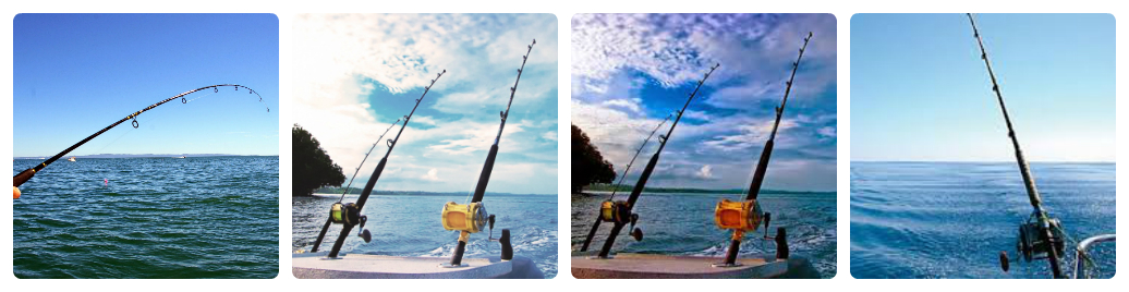 Có những loại cần câu cá nào hiện nay