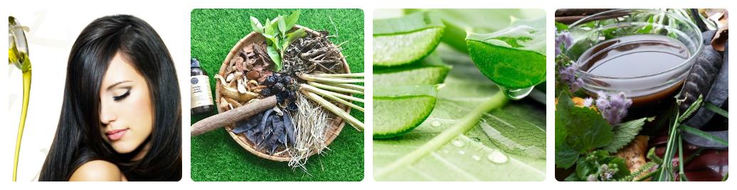 phương pháp giúp tóc mọc tự nhiên