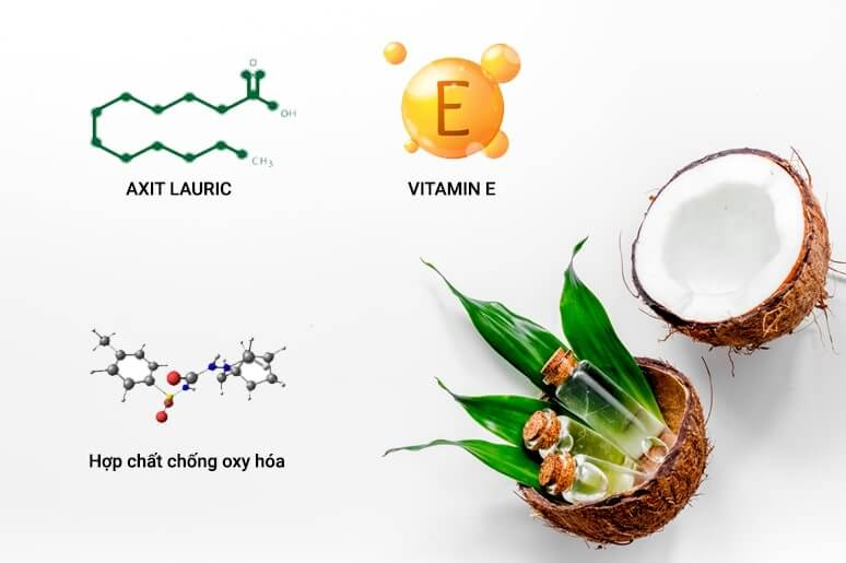 thành phần của dầu dừa trị sẹo rỗ