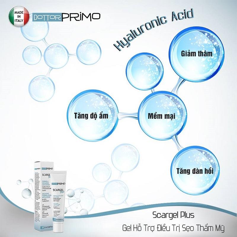 Các thành phần trong Dottorprimo - Trị các vết sẹo nặng có tác dụng đẩy nhanh quá trình liền sẹo