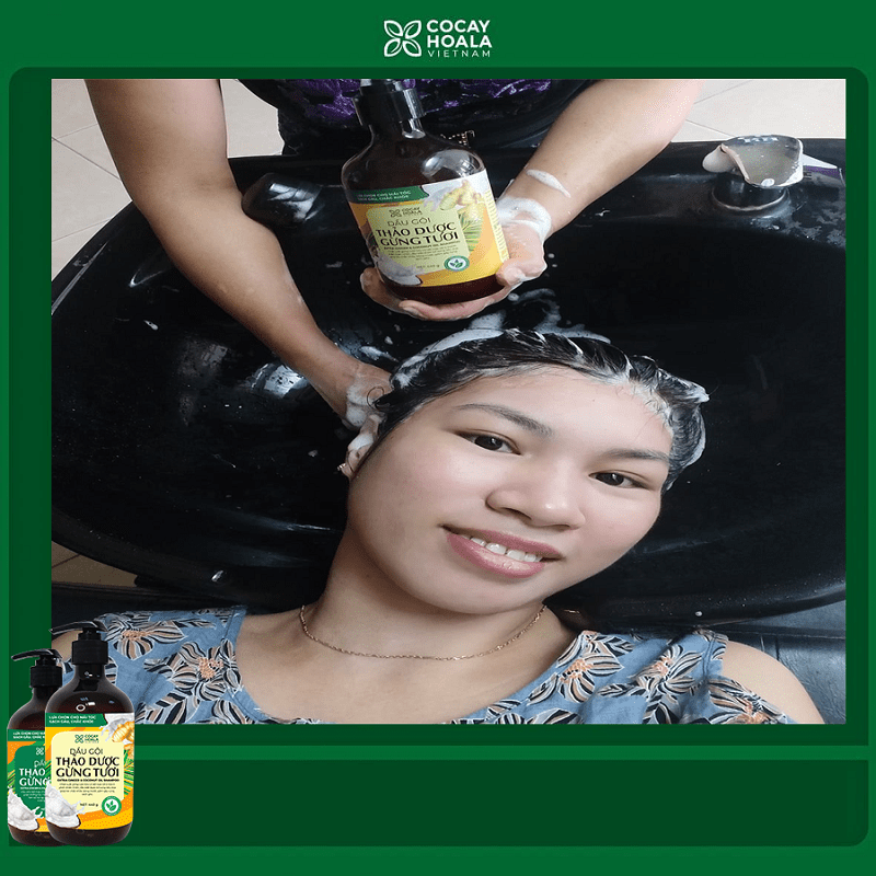 Công dụng chính của sản phẩm dầu gội - xả Gừng Dừa
