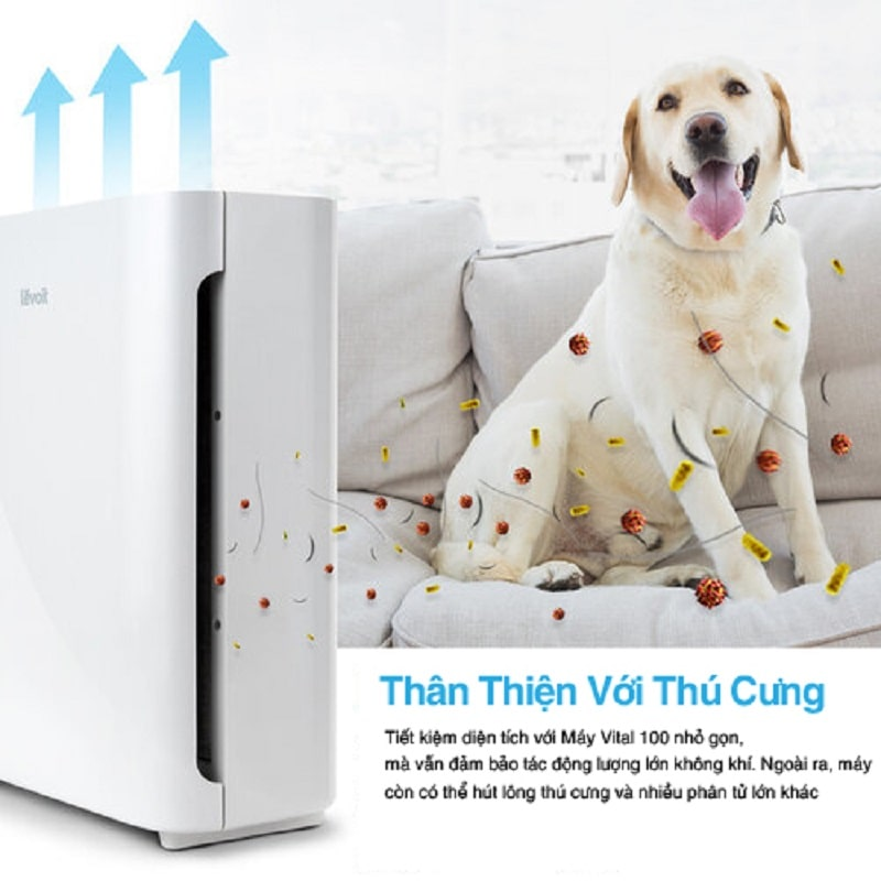 Lọc sạch lông thú cưng là một trong những công dụng tiêu biểu của sản phẩm