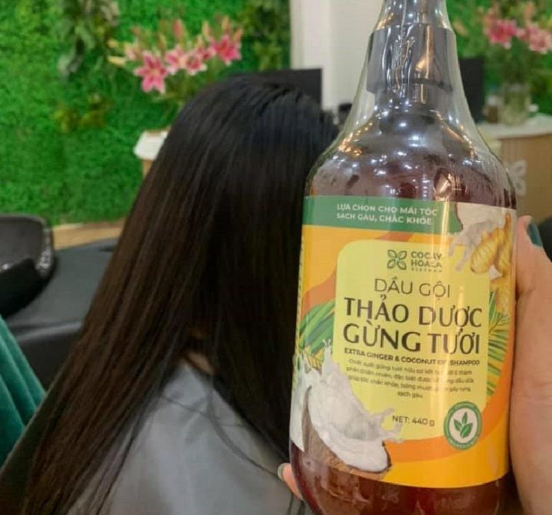 Phổ giá bộ sản phẩm dưỡng tóc Cỏ Cây Hoa Lá bao nhiêu hiện nay