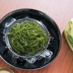 Rong nho Sabudo được sản xuất theo quy trình, công nghệ của Nhật Bản rất tốt cho sức khỏe