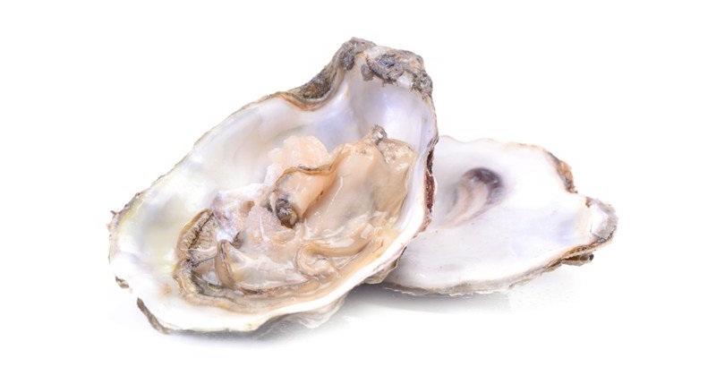 Tinh chất từ Vỏ Hàu Biển có trong Summeli mang đến hàm lượng Canxi không nhỏ